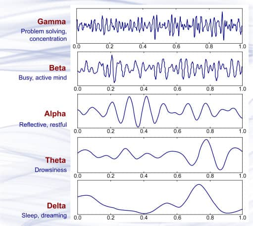 Brain Wave Frequencies
